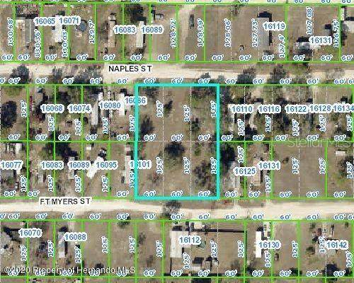 Ft Myers Street, Brooksville, FL 34604 (MLS #W7824343) :: Griffin Group