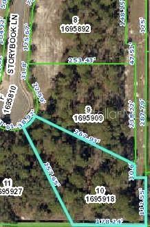 356 Storybook Lane, Spring Hill, FL 34609 (MLS #W7824401) :: Team Buky