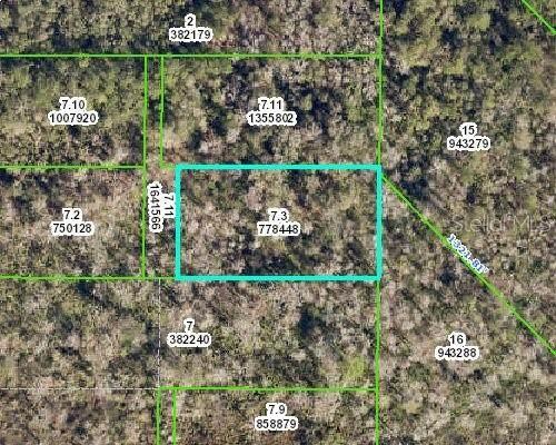 Culbreath Road, Brooksville, FL 34602 (MLS #W7824551) :: The Duncan Duo Team