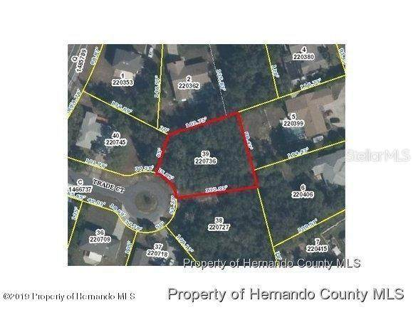 6469 Trade Court, Spring Hill, FL 34606 (MLS #W7824553) :: McConnell and Associates