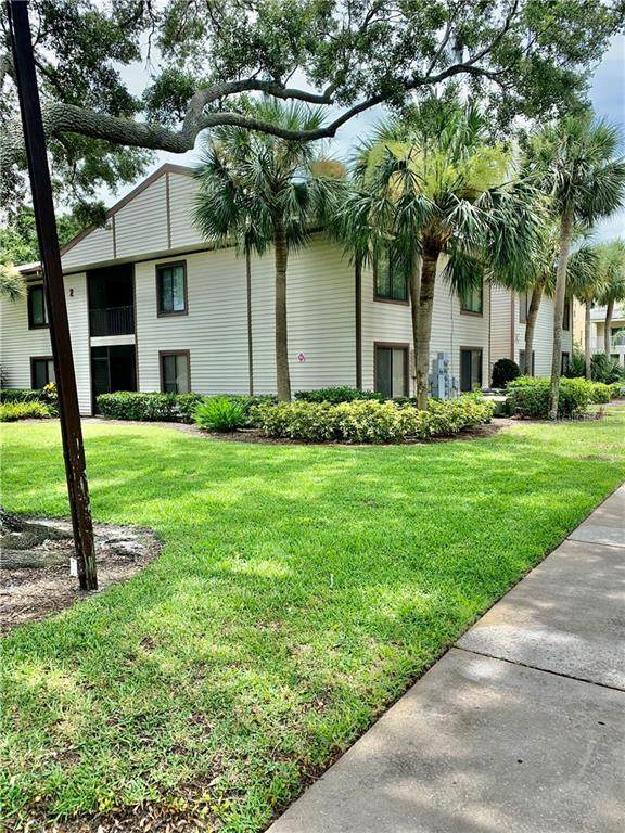 318 Moorings Cove Drive 2C, Tarpon Springs, FL 34689 (MLS #W7824574) :: Lockhart & Walseth Team, Realtors