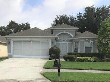 18916 Rolling Hills Loop, Hudson, FL 34667 (MLS #W7824599) :: Dalton Wade Real Estate Group