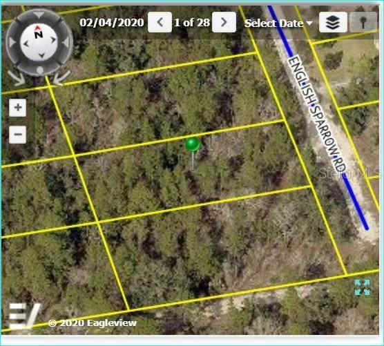 English Sparrow Road, Weeki Wachee, FL 34614 (MLS #W7824617) :: Rabell Realty Group