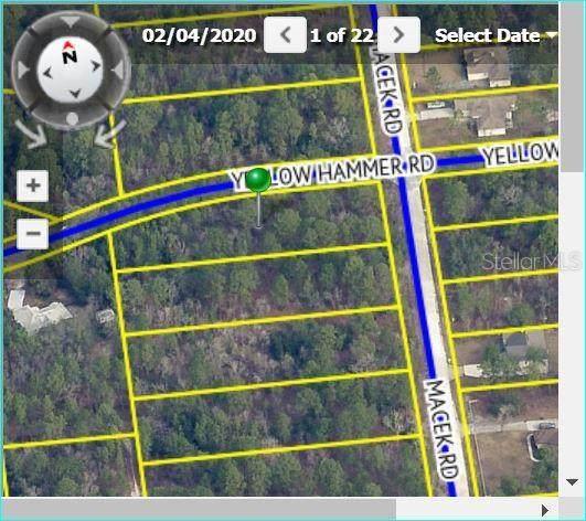 11196 Yellow Hammer Road, Weeki Wachee, FL 34614 (MLS #W7824650) :: Premium Properties Real Estate Services