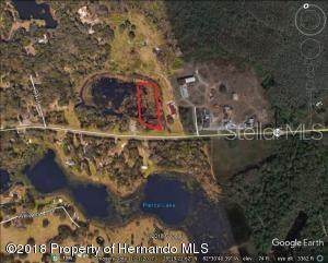 00 Fl-52, Land O Lakes, FL 34638 (MLS #W7825282) :: Bustamante Real Estate