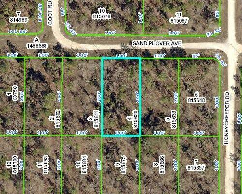 0 Sand Plover Avenue, Weeki Wachee, FL 34614 (MLS #W7825347) :: Pepine Realty