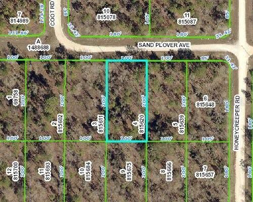 0 Sand Plover Avenue, Weeki Wachee, FL 34614 (MLS #W7825347) :: Zarghami Group