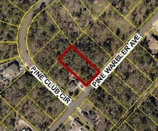 0 Pine Warbler Avenue Lot 13, Weeki Wachee, FL 34614 (MLS #W7825526) :: Griffin Group