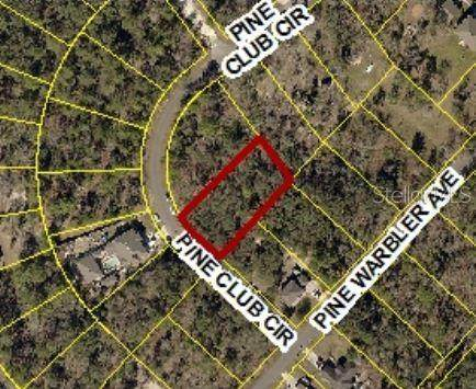 0 Pine Club Circle Lot 1, Weeki Wachee, FL 34614 (MLS #W7825527) :: Griffin Group