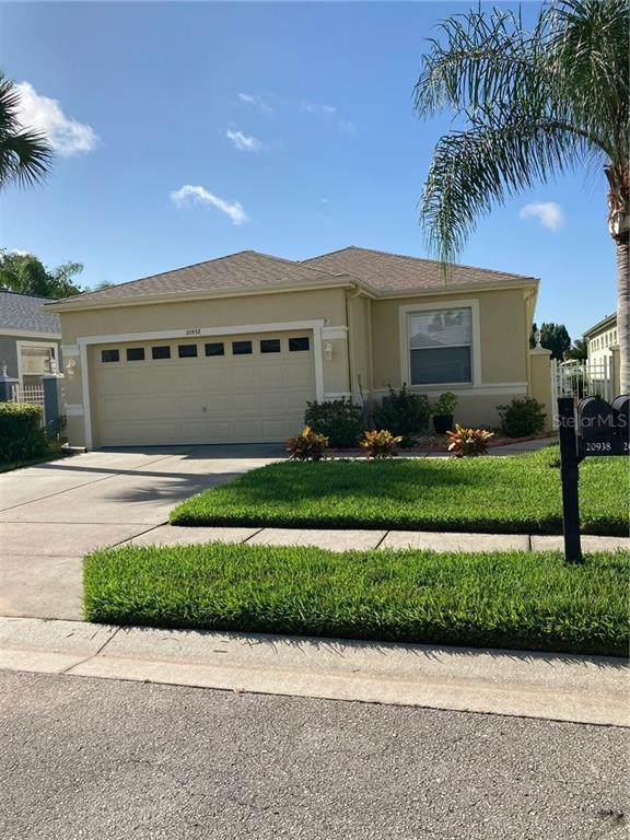 Address Not Published, Land O Lakes, FL 34637 (MLS #W7826200) :: Bustamante Real Estate