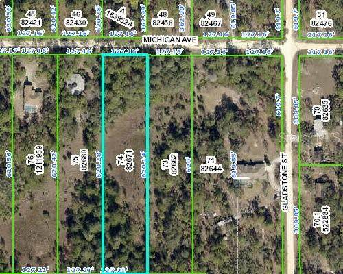 9142 Michigan Avenue, Weeki Wachee, FL 34613 (MLS #W7826211) :: Alpha Equity Team