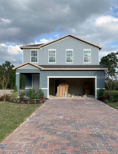10614 Hawks Landing Drive, Land O Lakes, FL 34638 (MLS #W7826531) :: Rabell Realty Group