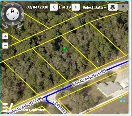 Address Not Published, Weeki Wachee, FL 34614 (MLS #W7826557) :: Bustamante Real Estate