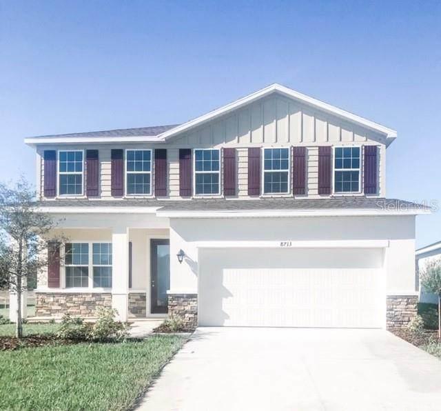 18261 Falling Pine Needle Lane, Land O Lakes, FL 34638 (MLS #W7826575) :: Rabell Realty Group
