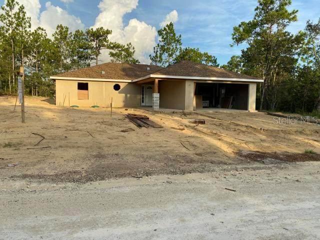 12327 Millington Avenue, Weeki Wachee, FL 34614 (MLS #W7826612) :: Bustamante Real Estate