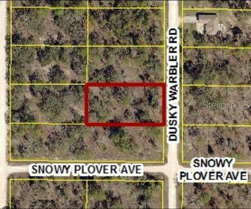 0 Dusky Warbler Road Lot 15, Weeki Wachee, FL 34614 (MLS #W7826781) :: Rabell Realty Group