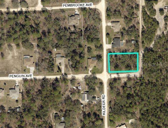 13206 Kildeer Road, Weeki Wachee, FL 34614 (MLS #W7826887) :: Heckler Realty