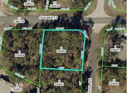 0 Dristol Avenue, Spring Hill, FL 34609 (MLS #W7827042) :: Griffin Group