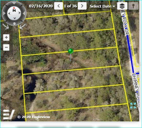 9103 Chimney Rock Drive, Webster, FL 33597 (MLS #W7827063) :: Alpha Equity Team