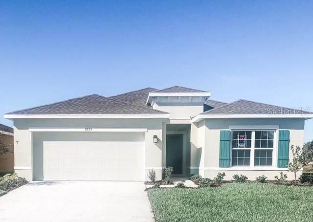 4303 Silver Creek Street, Kissimmee, FL 34744 (MLS #W7827228) :: Frankenstein Home Team
