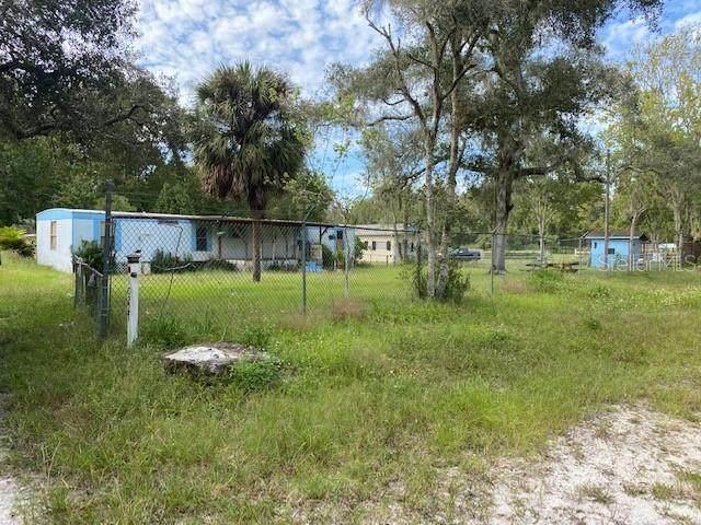 10227 Lorell Street, New Port Richey, FL 34654 (MLS #W7827243) :: The Duncan Duo Team
