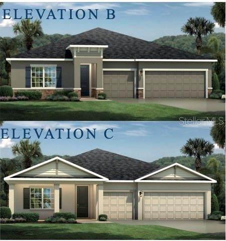 6218 113TH Terrace E, Parrish, FL 34219 (MLS #W7827625) :: Griffin Group