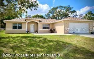 5111 Teather Street, Spring Hill, FL 34608 (MLS #W7828037) :: Pepine Realty