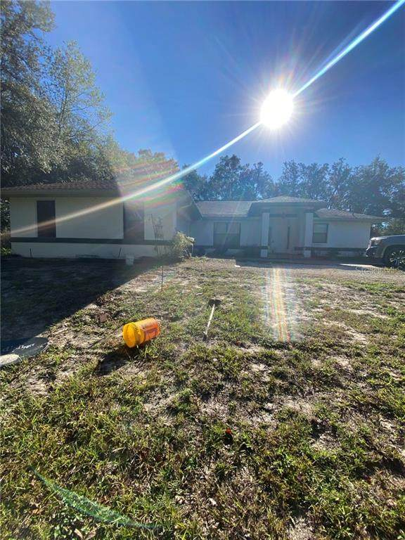 8705 N Himalayas Point, Dunnellon, FL 34433 (MLS #W7828103) :: Pepine Realty