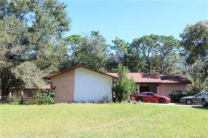 911 W Almont Place, Citrus Springs, FL 34434 (MLS #W7828363) :: Bustamante Real Estate