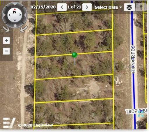 Courlan Road, Weeki Wachee, FL 34614 (MLS #W7828472) :: Carmena and Associates Realty Group