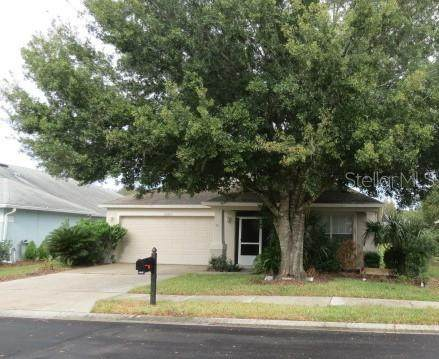 20829 Nectarine Place, Land O Lakes, FL 34637 (MLS #W7828653) :: Team Bohannon Keller Williams, Tampa Properties