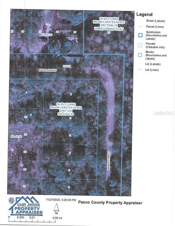 12930 Nadia Avenue, New Port Richey, FL 34654 (MLS #W7828777) :: Griffin Group
