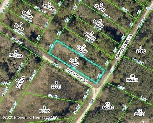 0 Chipstone Street, Webster, FL 33597 (MLS #W7828872) :: Everlane Realty