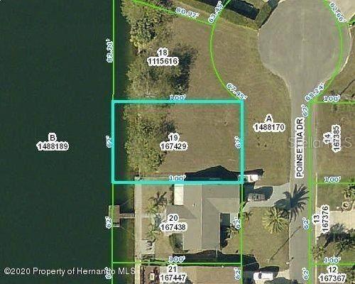 0 Poinsettia Drive, Hernando Beach, FL 34607 (MLS #W7829282) :: Expert Advisors Group
