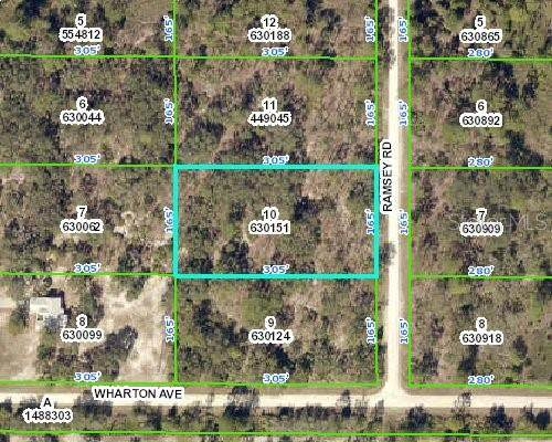 18027 Ramsey Road, Weeki Wachee, FL 34614 (MLS #W7829480) :: Griffin Group
