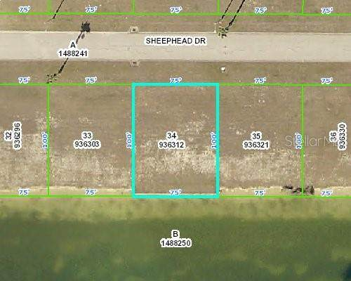 3424 Sheephead Drive, Hernando Beach, FL 34607 (MLS #W7829485) :: Expert Advisors Group