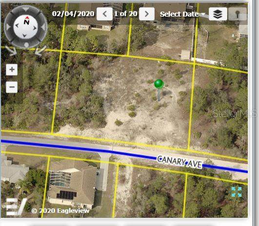 10475 Canary Avenue, Weeki Wachee, FL 34613 (MLS #W7829628) :: Griffin Group