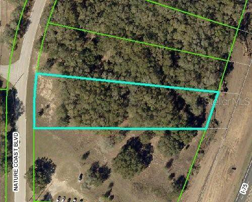 0000 Nature Coast Boulevard, Brooksville, FL 34602 (MLS #W7829812) :: Lockhart & Walseth Team, Realtors
