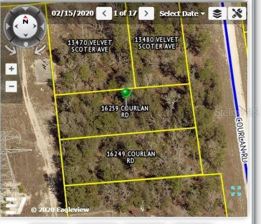 16259 Courlan Road, Weeki Wachee, FL 34614 (MLS #W7830108) :: Everlane Realty