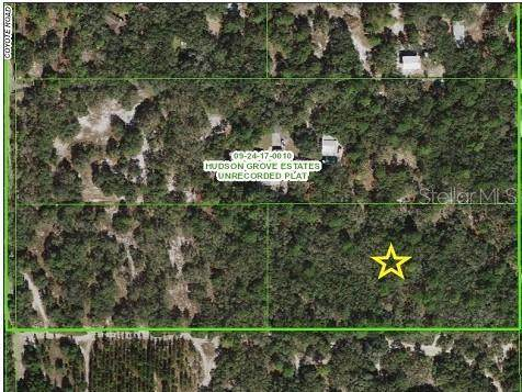 Coyote Road, Hudson, FL 34667 (MLS #W7830112) :: Cartwright Realty