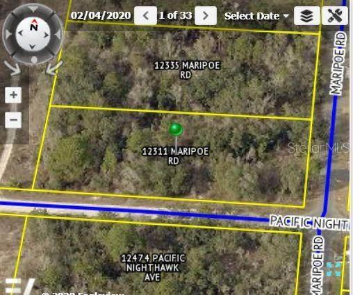12311 Maripoe Road, Weeki Wachee, FL 34614 (MLS #W7830114) :: Everlane Realty