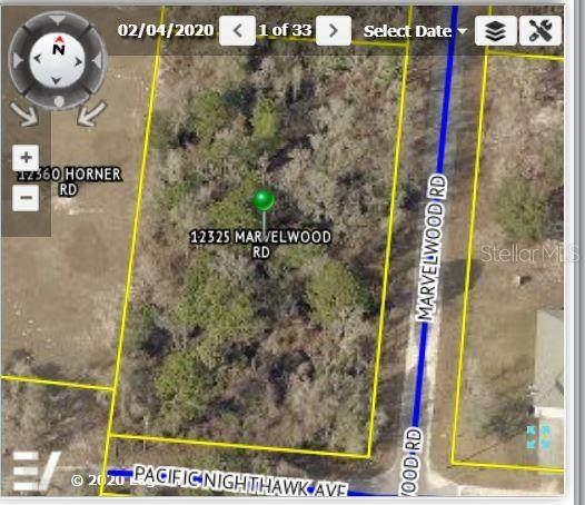 12325 Marvelwood Road, Weeki Wachee, FL 34614 (MLS #W7830116) :: Everlane Realty