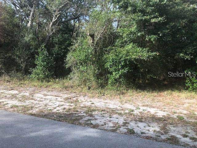 189 Candlewick Avenue, Spring Hill, FL 34608 (MLS #W7830128) :: Griffin Group