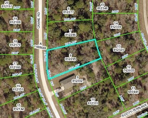 0 Crane Drive, Weeki Wachee, FL 34614 (MLS #W7830164) :: Godwin Realty Group