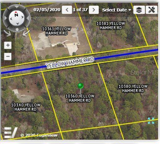 10360 Yellow Hammer Road, Weeki Wachee, FL 34614 (MLS #W7830208) :: Lockhart & Walseth Team, Realtors