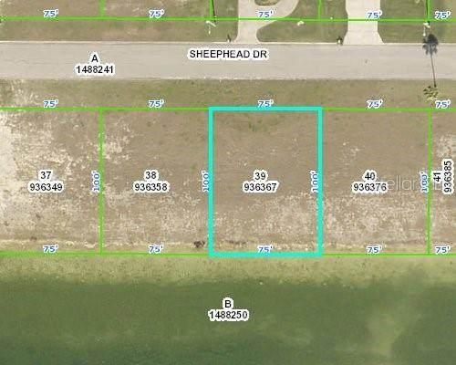 3464 Sheephead Drive, Hernando Beach, FL 34607 (MLS #W7830407) :: Pepine Realty