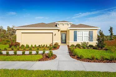 18299 Falling Pine Needle Lane, Land O Lakes, FL 34638 (MLS #W7830586) :: Vacasa Real Estate