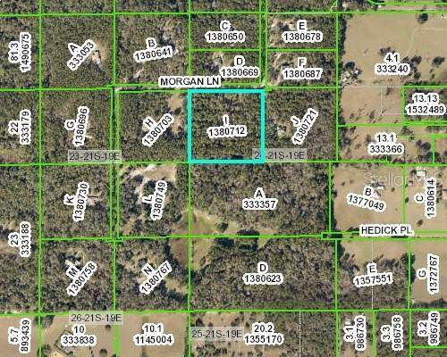 15176 Morgan Lane, Brooksville, FL 34601 (MLS #W7831120) :: Rabell Realty Group