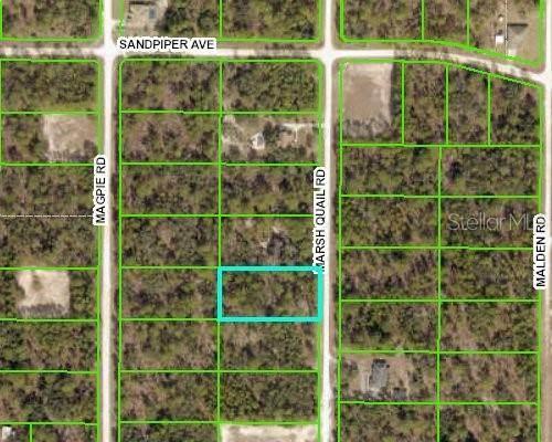 0 Marsh Quail Road, Weeki Wachee, FL 34614 (MLS #W7831184) :: RE/MAX Premier Properties