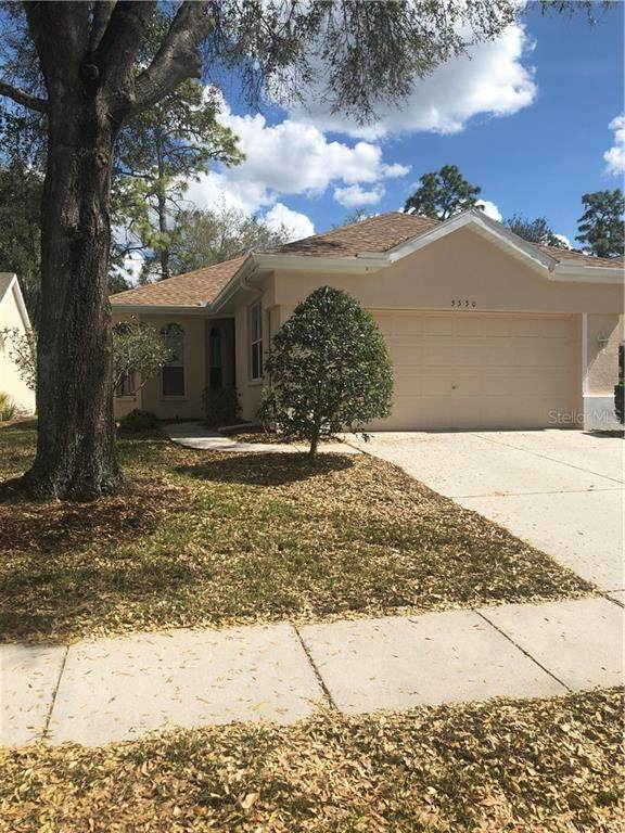 5550 Legend Hills Lane, Spring Hill, FL 34609 (MLS #W7831240) :: Rabell Realty Group